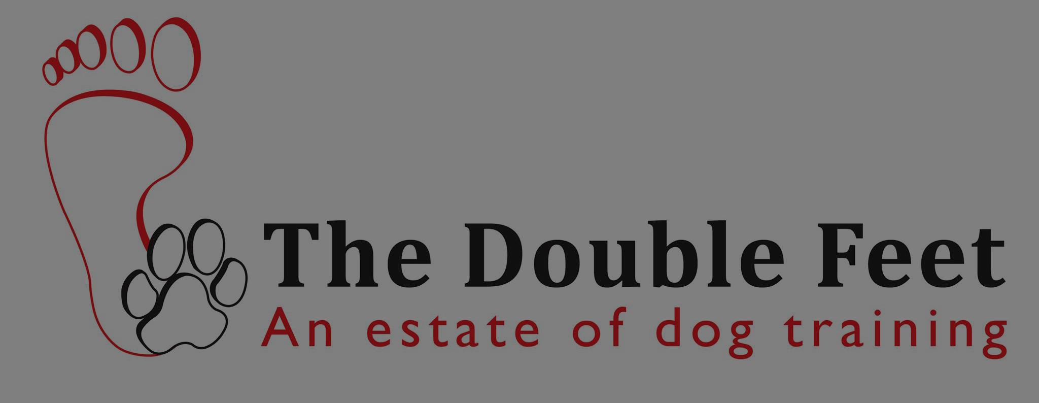 cropped-the_double_feet_logo_recht-e1505385384370